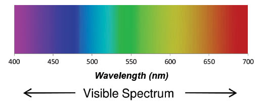 Image result for visible light spectrum